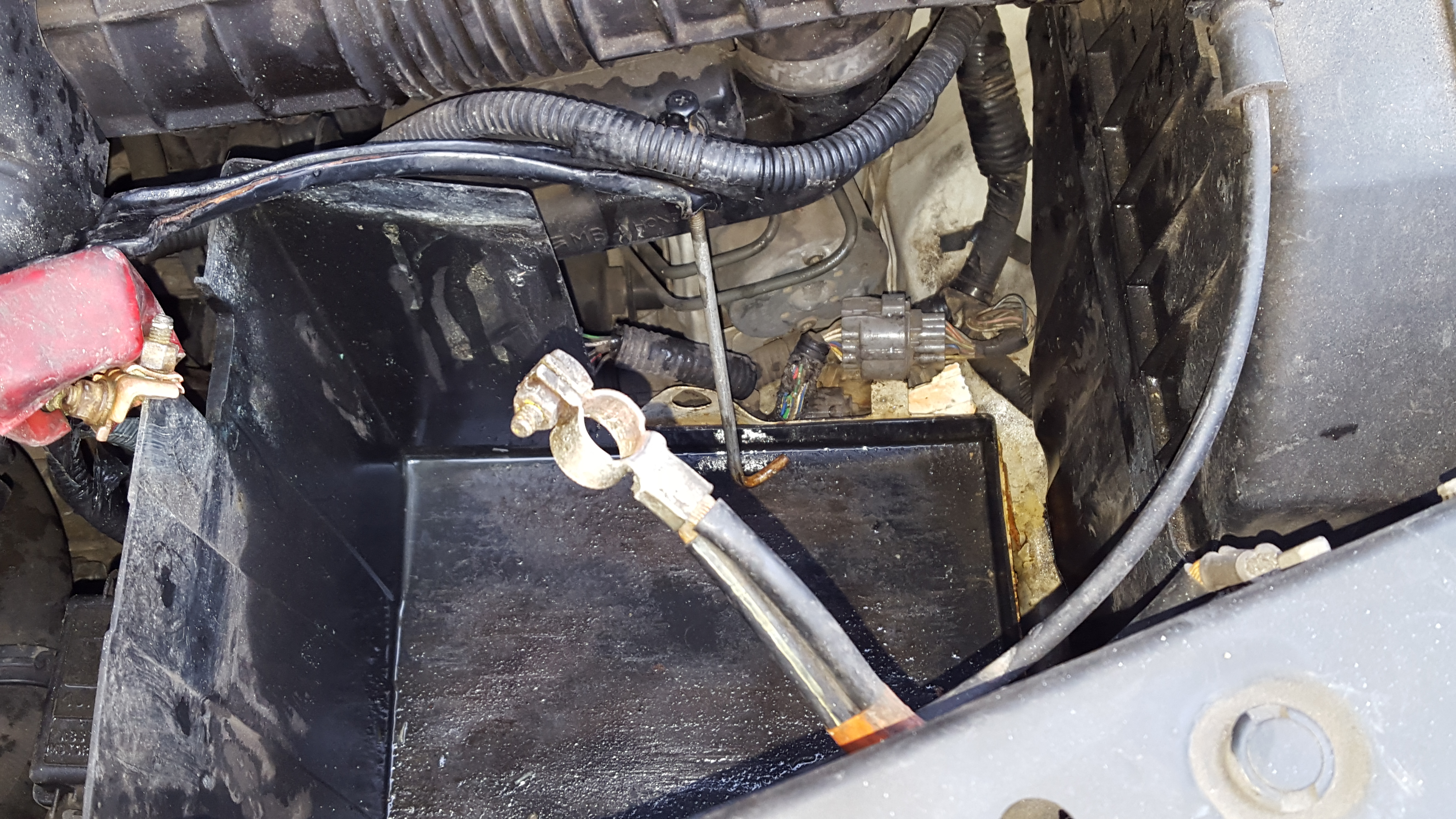 A Rodent Chewed Up Wire Harness Near My Battery Acura Mdx Forum Mb Wiring 98 Views