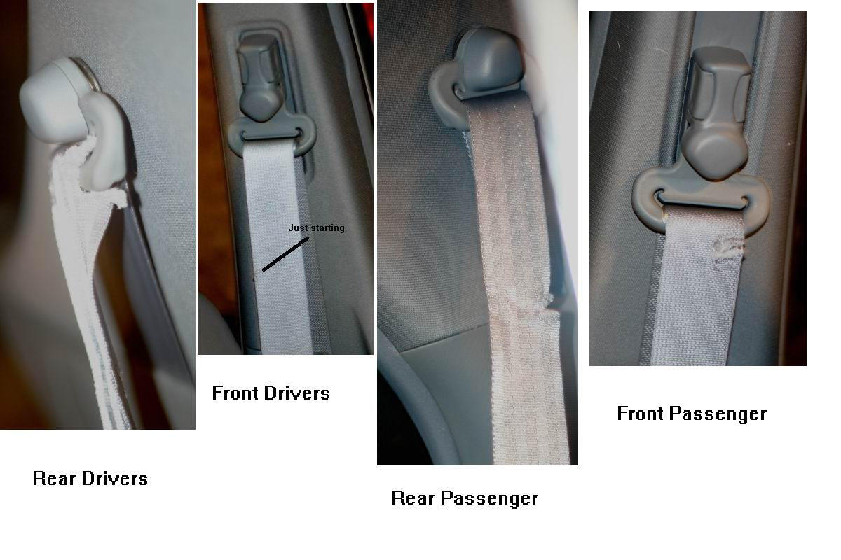 Cut Rear Seat Belt Acura Mdx Forum Acura Mdx Suv Forums